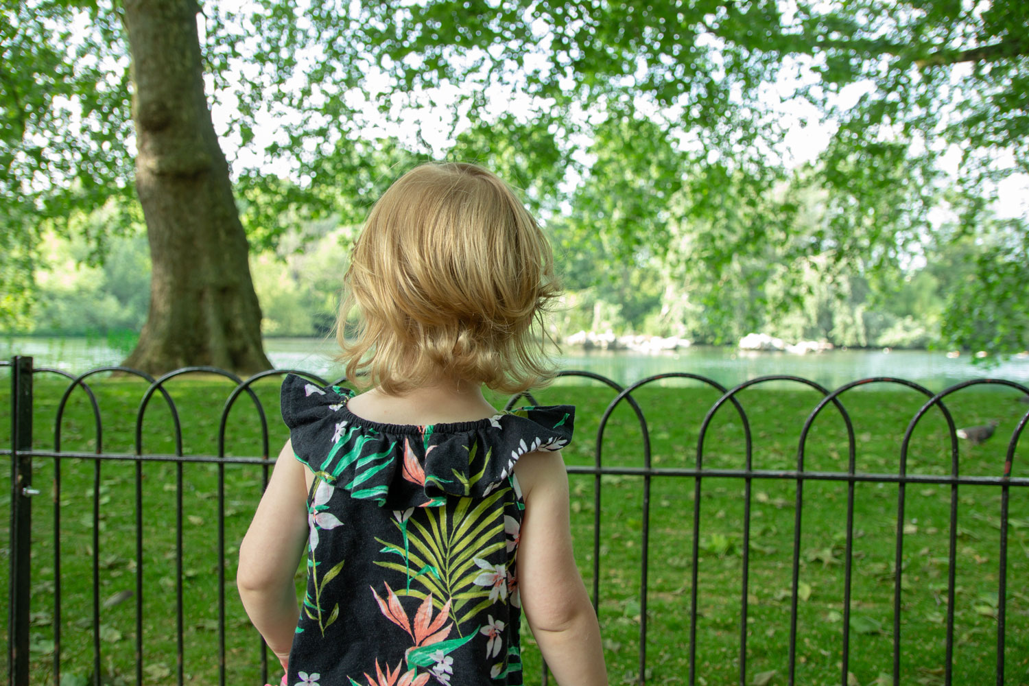 London with Toddlers | Hyde Park